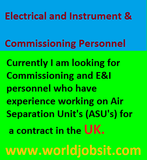 Electrical and Instrument & Commissioning Personnel