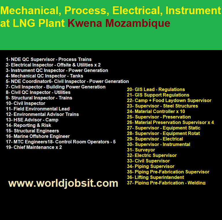 Mechanical, Process, Electrical, Instrument at LNG Plant