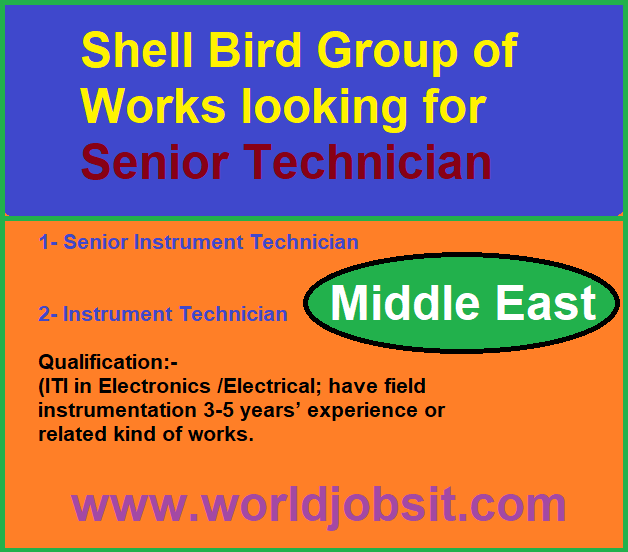 Shell Bird Group of Works looking for Senior Technician
