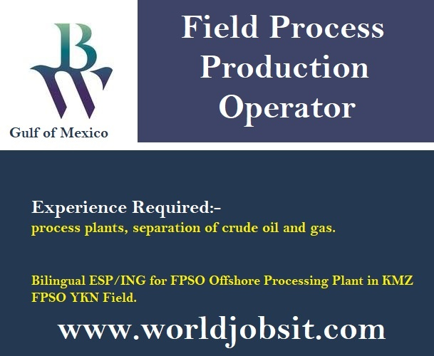 We search for Field Process Production Operator